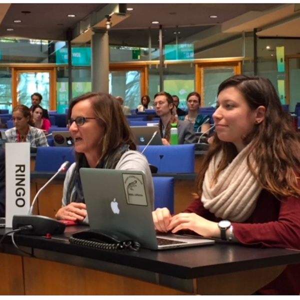 Student delegates gear up for Madrid climate conference