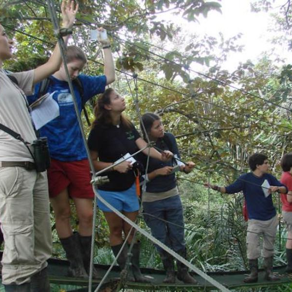 students doing ropes course